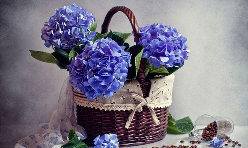 Романтическая корзина с цветами