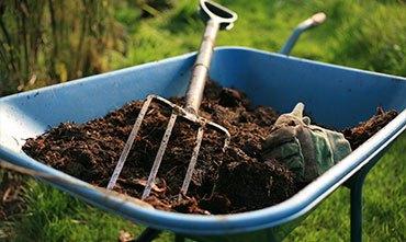 Работы осенью в саду