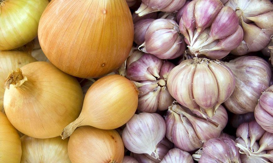 Хранение урожая лука и чеснока