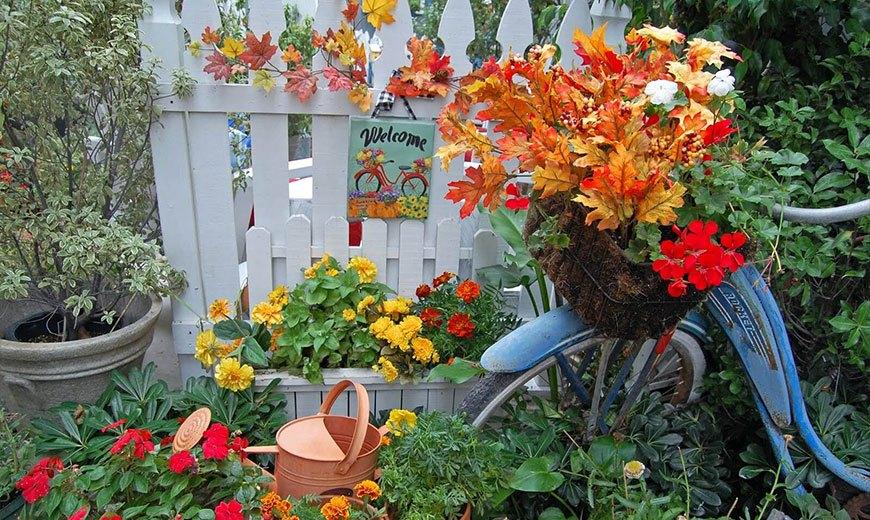 Осенние идеи для сада