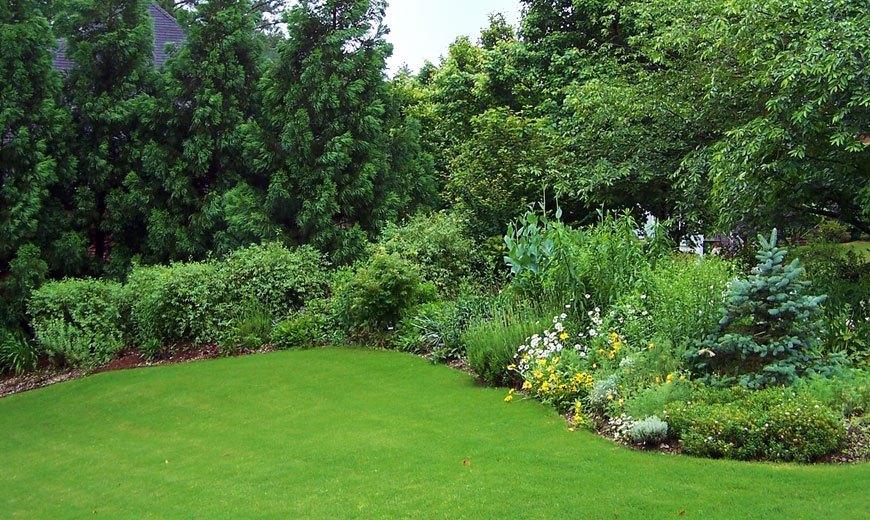 Партерный газон в саду