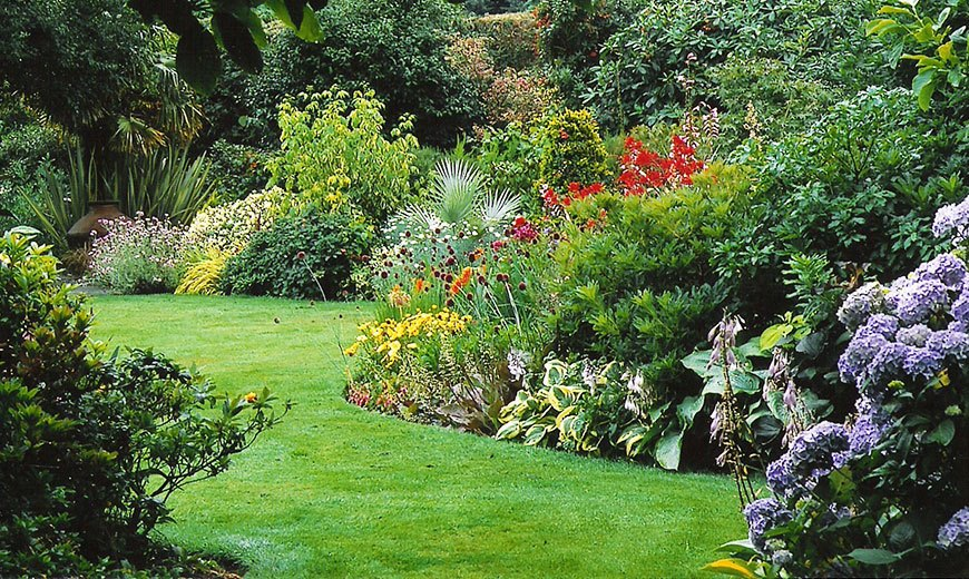Партерный газон в южном саду