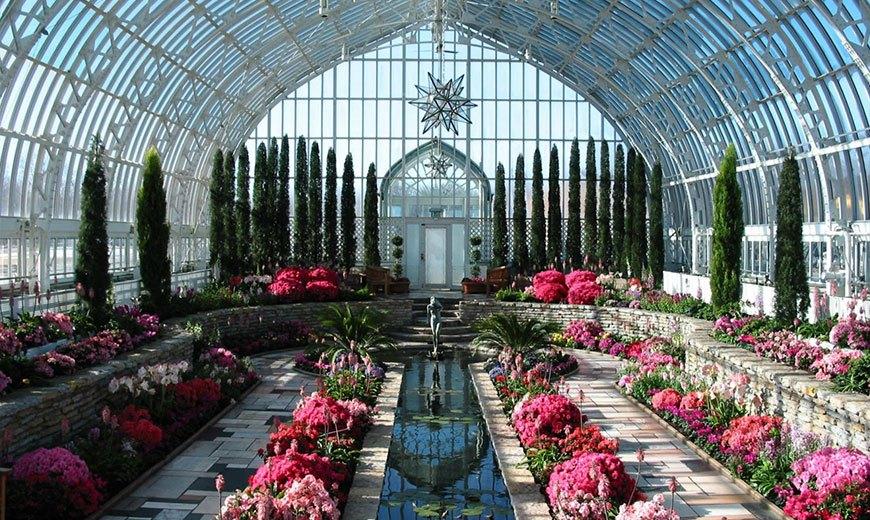 Восточный зимний сад