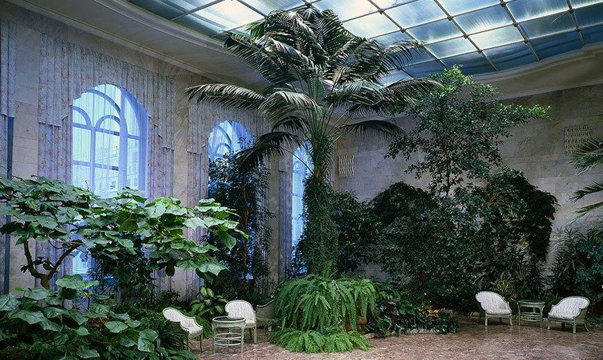 Голубой зимний сад