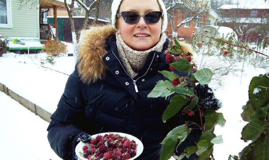 Ягода малина нас зимой манила