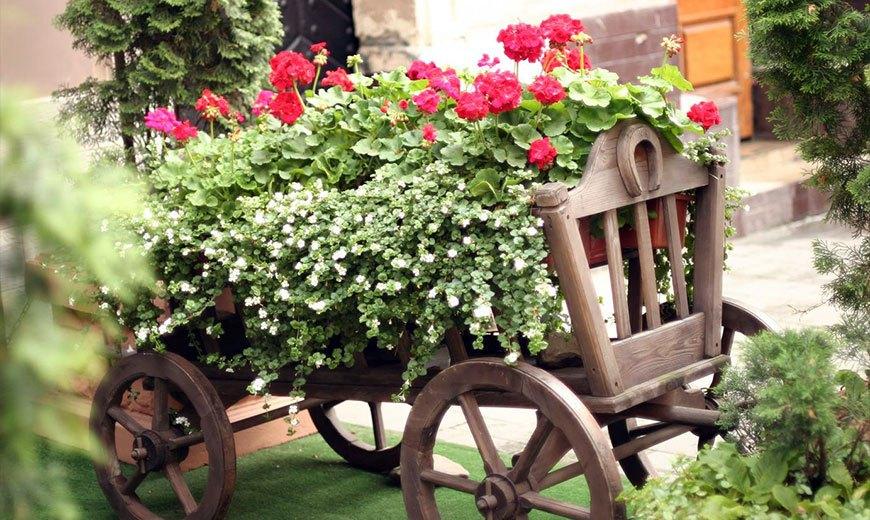 Садовая композиция с пеларгонией