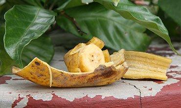 Удобрение банановой кожурой