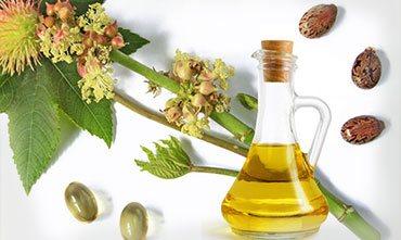 Подкормка растений касторовым маслом
