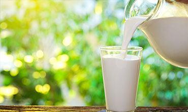 Удобрение растений молоком