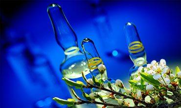 Удобрение растений витамином группы В