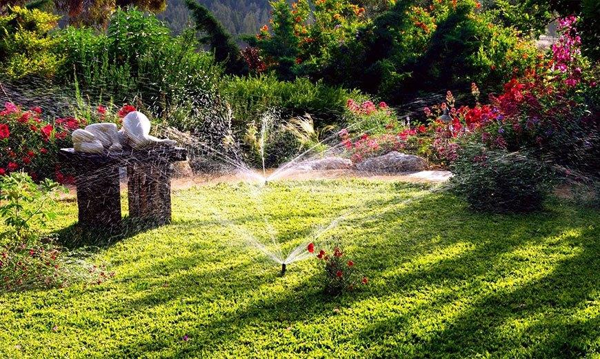 Полив красивого газона