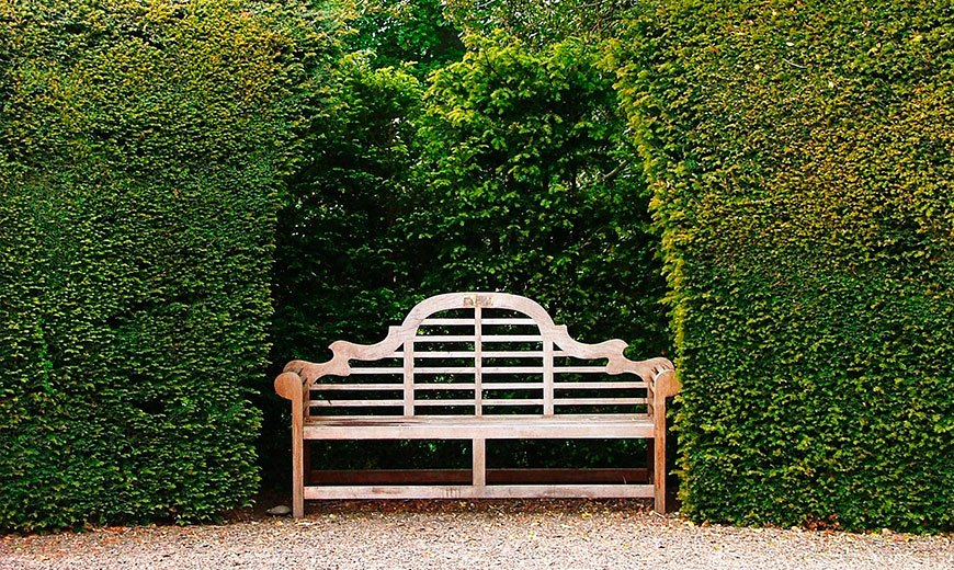 Скамейка в регулярном саду