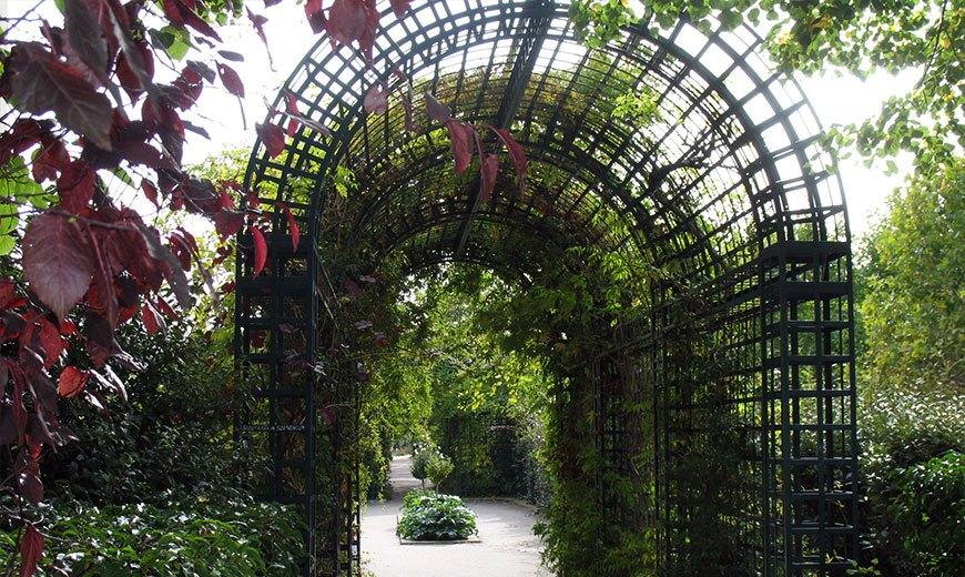 Конструкция арки для сада