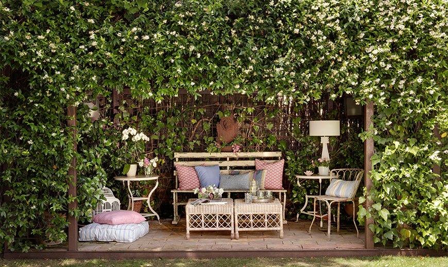 Пергола-ширма в саду
