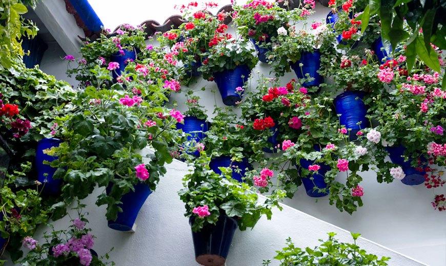Вертикальные цветущие клумбы