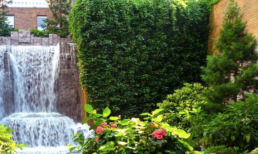 Озеленение в саду