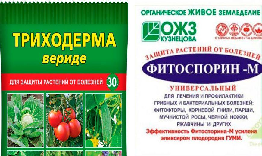 биофунгициды для лаванды