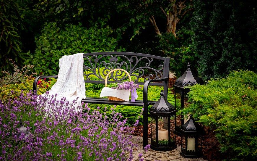место отдыха с лавандой
