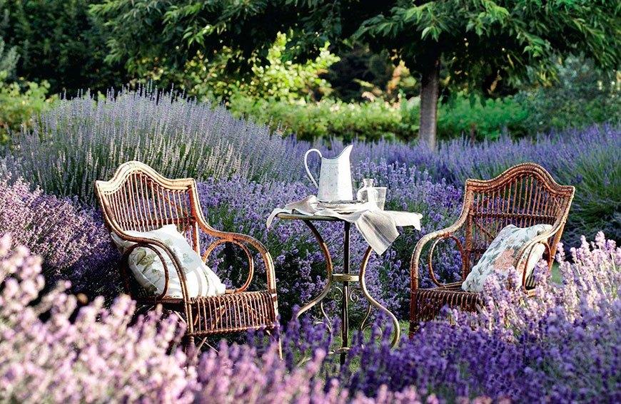 садовые комнаты с лавандой